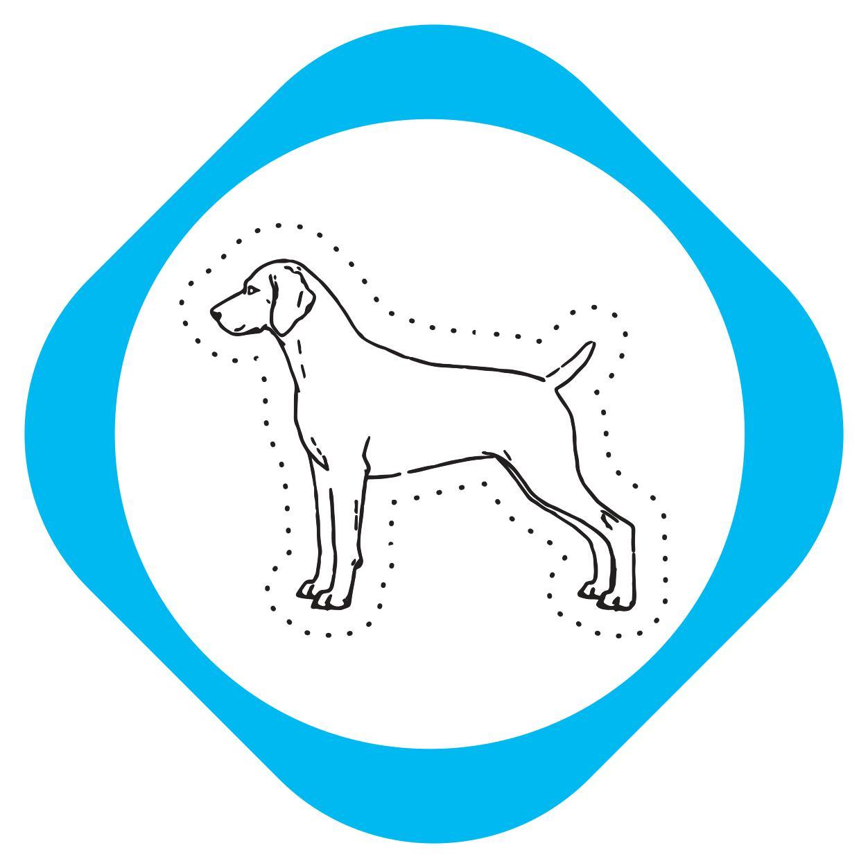 https://pets.alfa-vet.com/image/catalog/avatars/0007.jpg