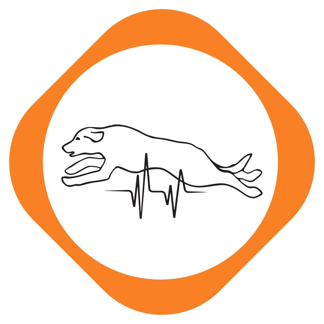 https://pets.alfa-vet.com/image/catalog/avatars/0011.jpg