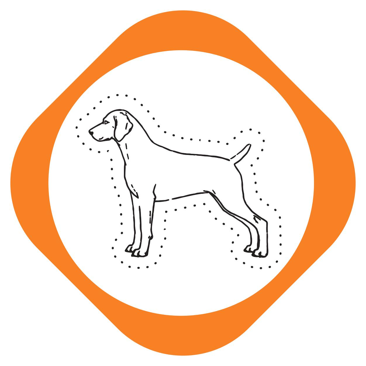 https://pets.alfa-vet.com/image/catalog/avatars/0012.jpg
