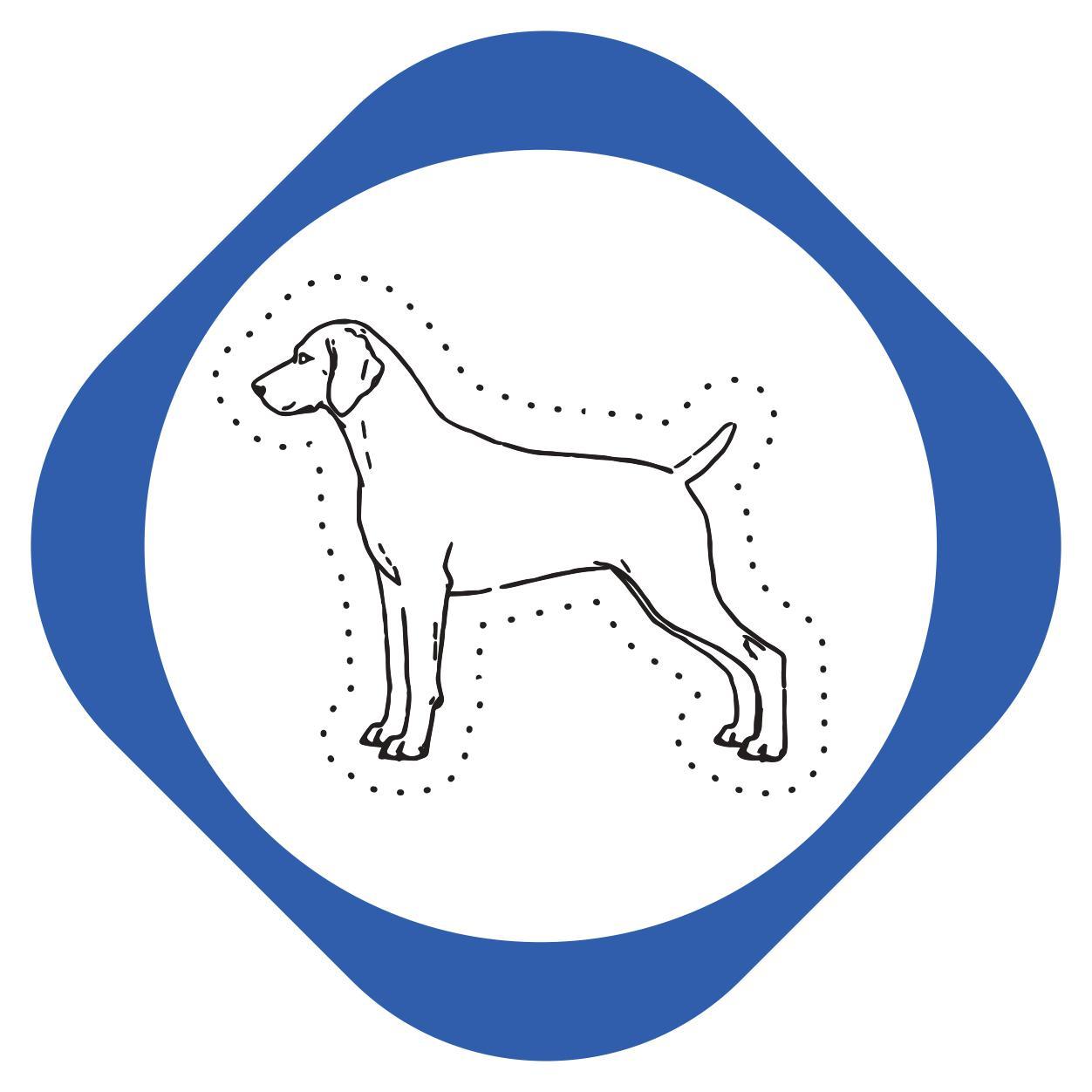 https://pets.alfa-vet.com/image/catalog/avatars/0024.jpg