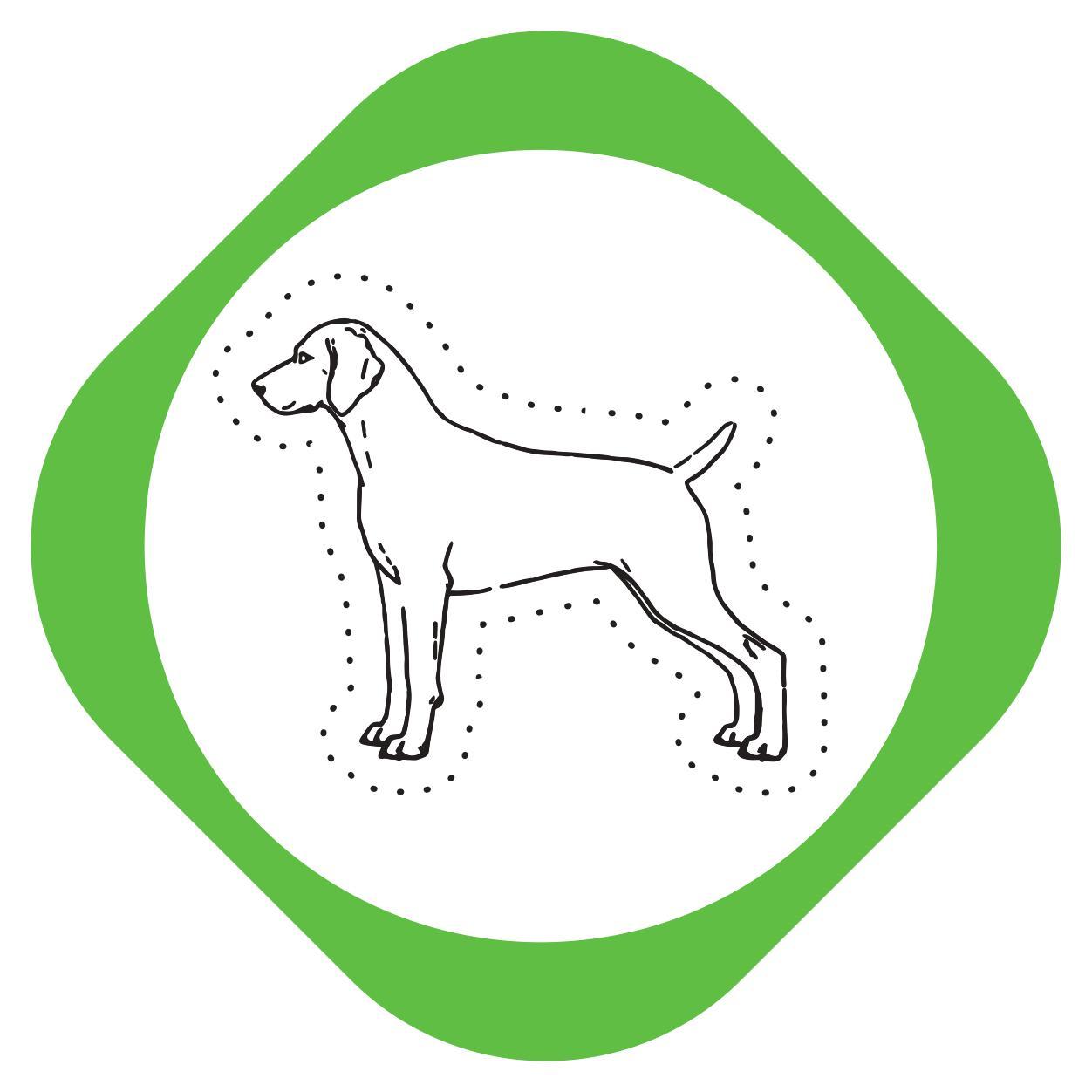 https://pets.alfa-vet.com/image/catalog/avatars/0032.jpg