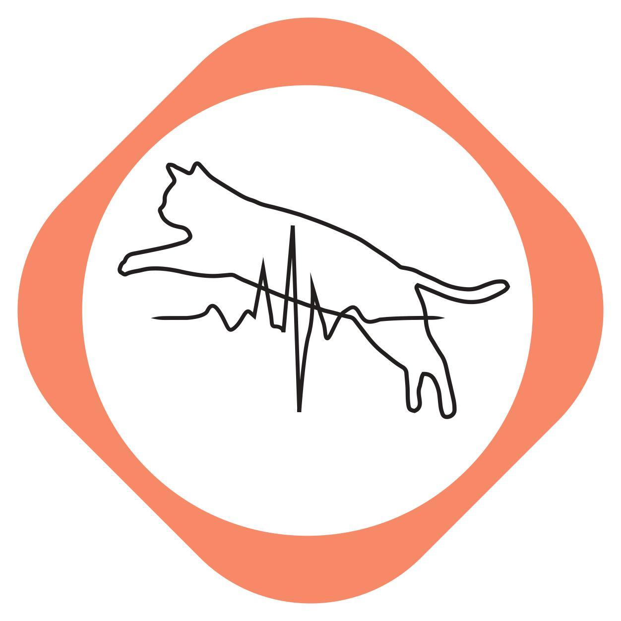 https://pets.alfa-vet.com/image/catalog/avatars/0051.jpg